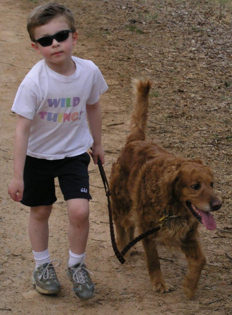 Asheville Dog Training - Wild Thing