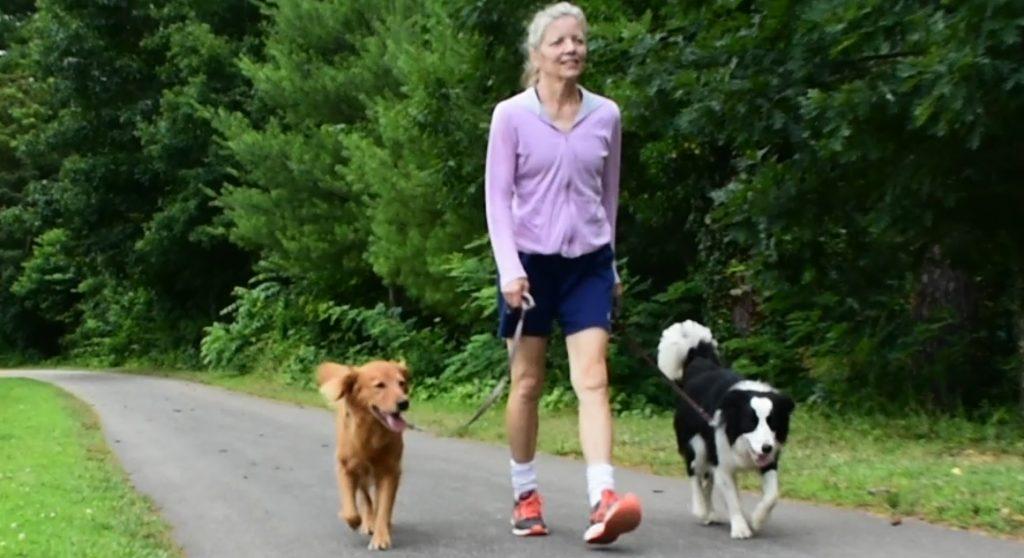 Lucky Dog Training Asheville